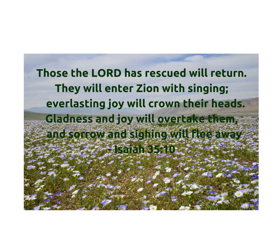 Isaiah 35:10 - everlasting joy!