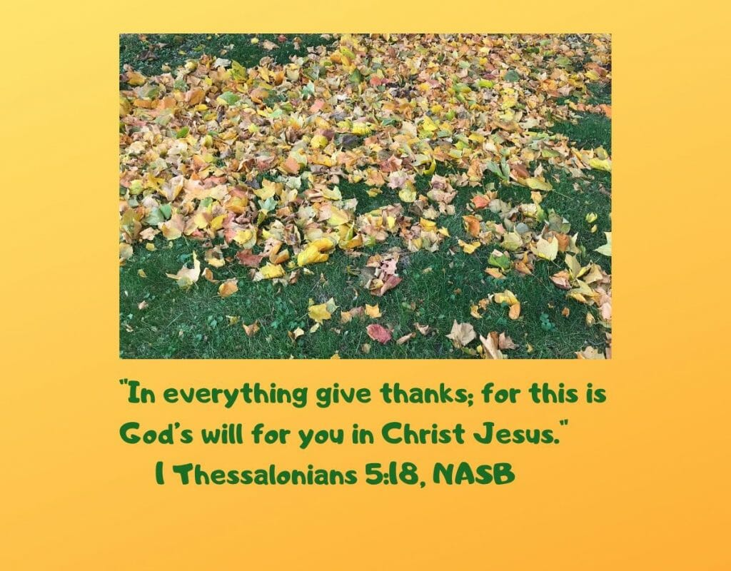 """In everything give thanks, for this is God's will for you in Christ Jesus."" - I Thessalonians 5:18, NASB"