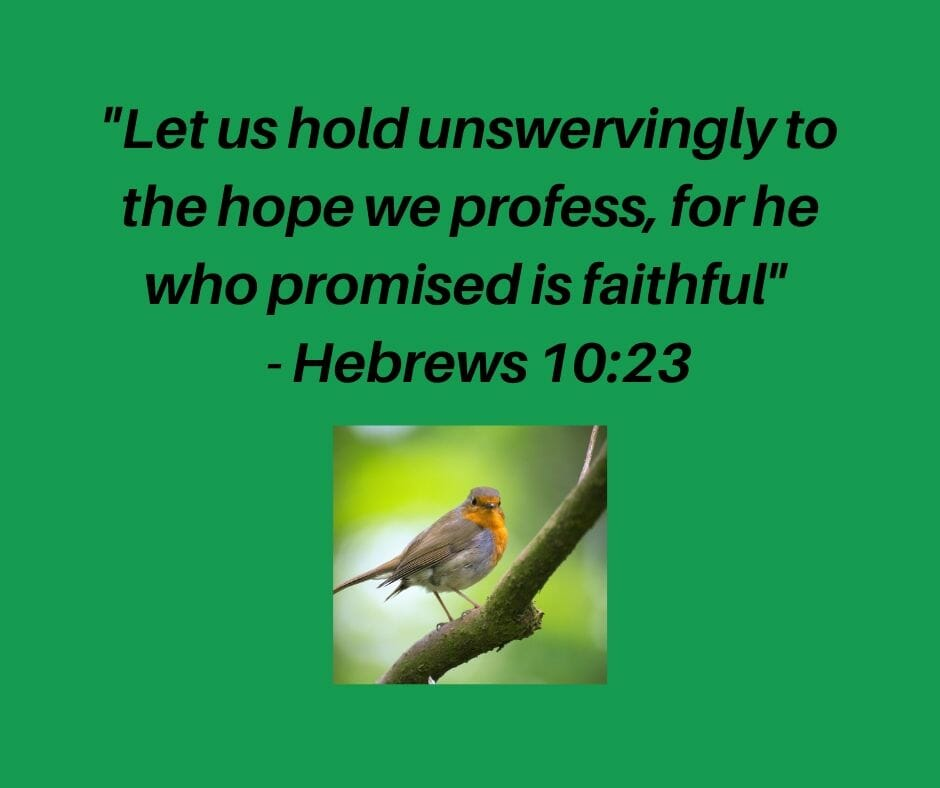 """Let us hold unswervingly to the hope we profess, for he who promised is faithful."" - Hebrews 10:23, NIV"