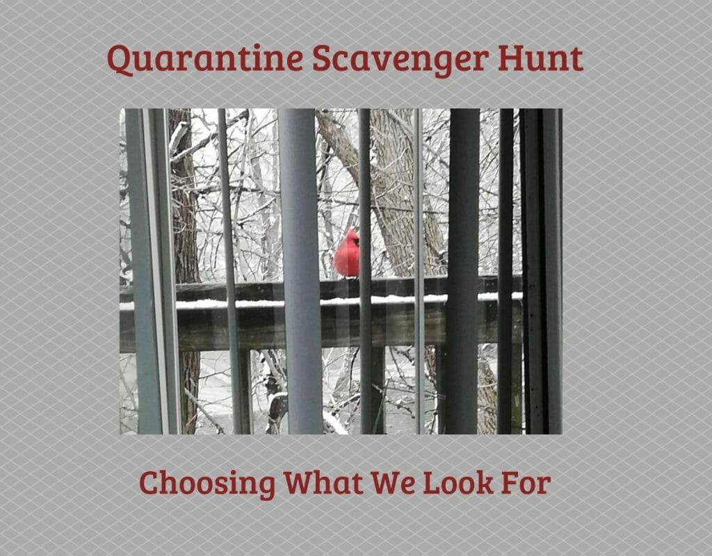 Quarantine Scavenger Hunt: Choosing What To Look For