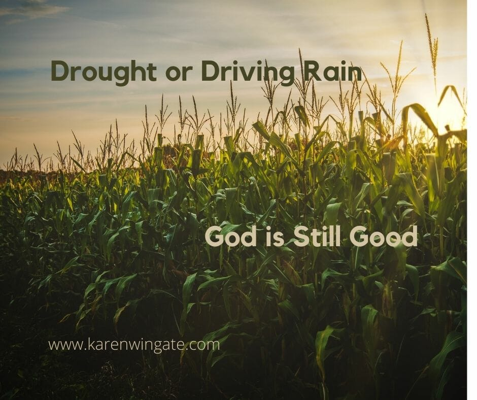 Drought or Driving Rain, Good is still Good