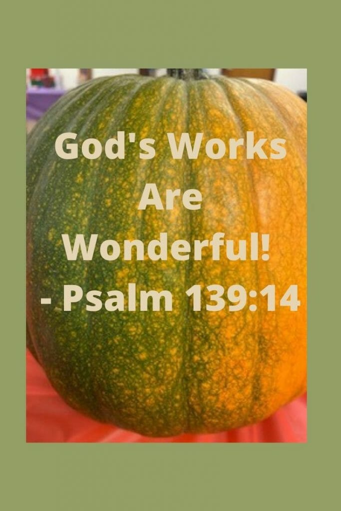 God's works are wonderful - Psalm 139:14