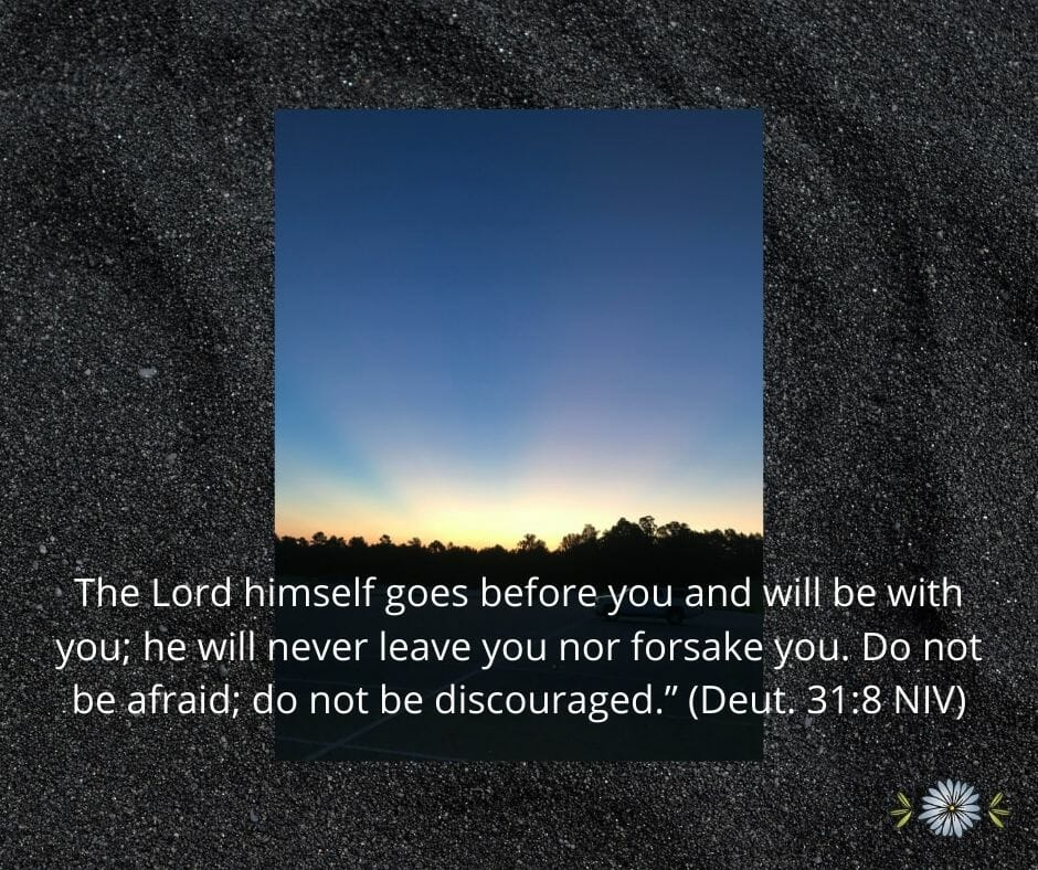 """The Lord himself goes before you and will be with you; he will never leave you nor forsake you. Do not be afraid; do not be discouraged."""" (Deuteronomy 31:8 NIV)"""